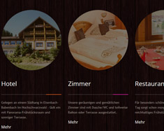 Website Waldhotel Auerhahn
